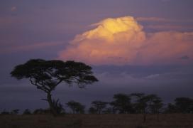 Africa_002