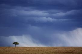 Africa_003
