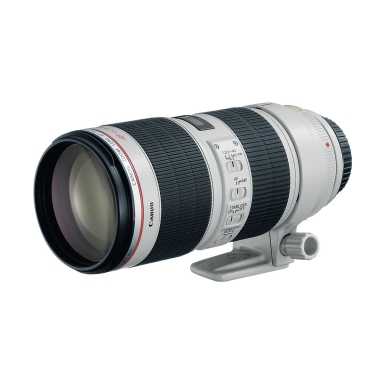 Canon EF 70-200mm f2.8 IS Series II